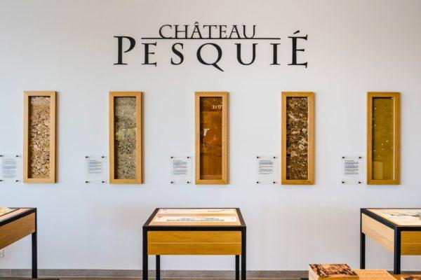 visite guidée Château Pesquié